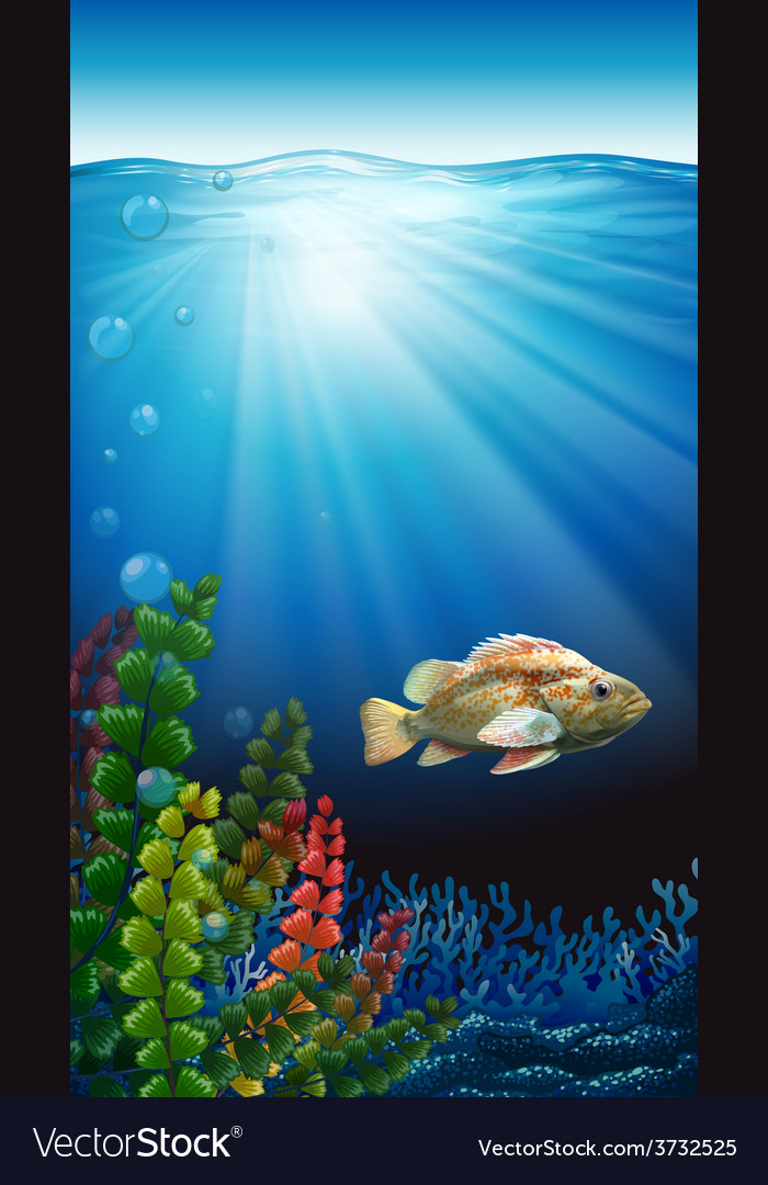 A fish vector   Price: 1 Credit (USD $1)