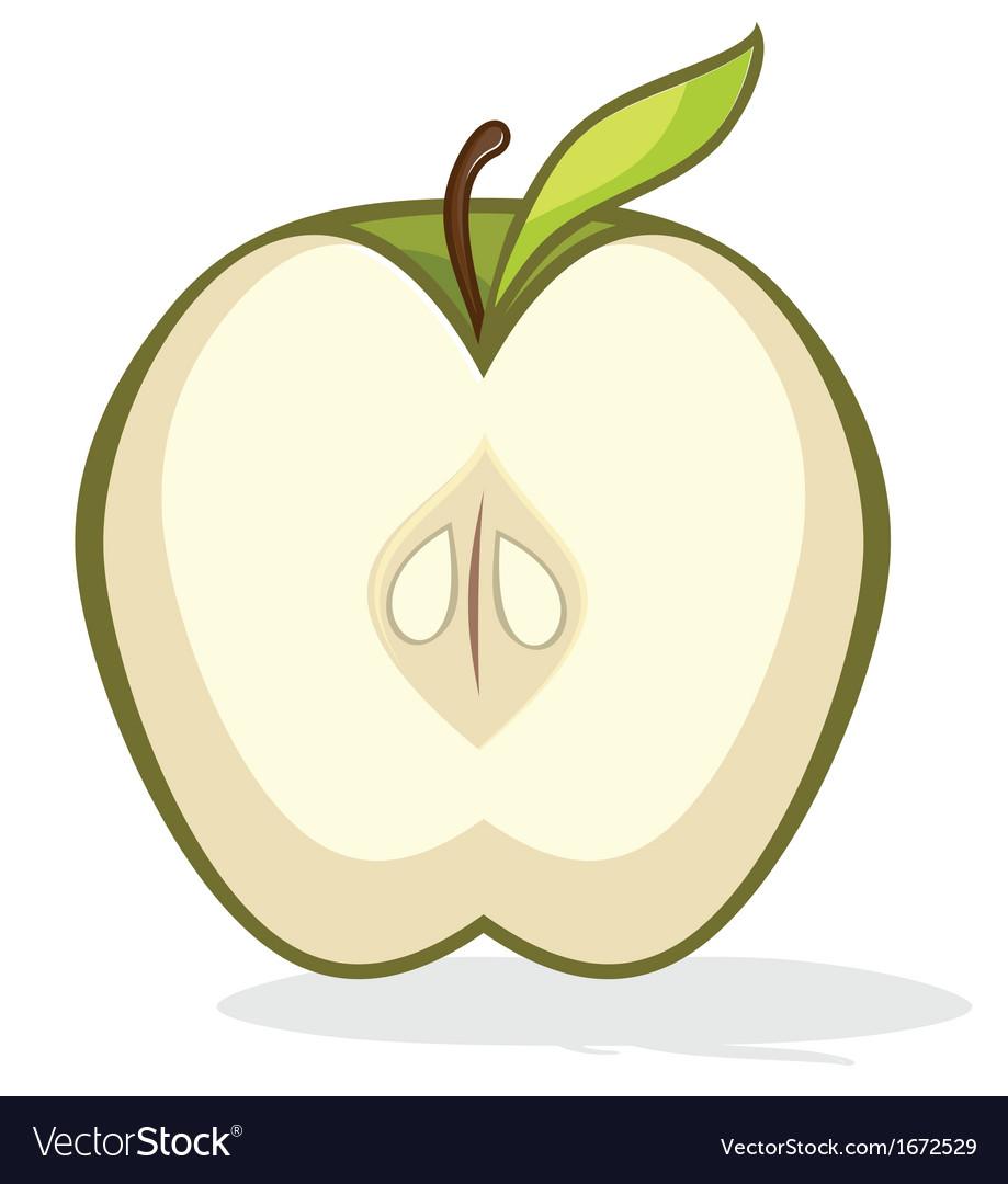 Green apple half vector | Price: 1 Credit (USD $1)