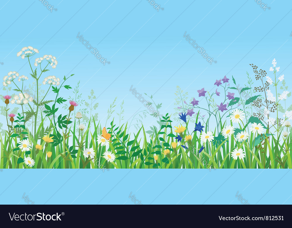 Summer meadow vector | Price: 3 Credit (USD $3)