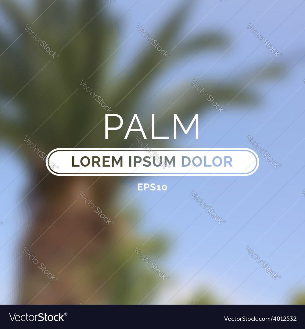 Summer palm blurred unfocused retro background vector | Price: 1 Credit (USD $1)