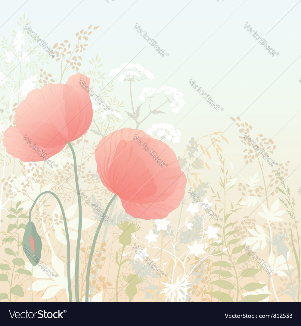 Wild poppies vector | Price: 1 Credit (USD $1)