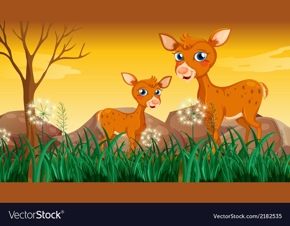 Two deers near the grass vector | Price: 3 Credit (USD $3)