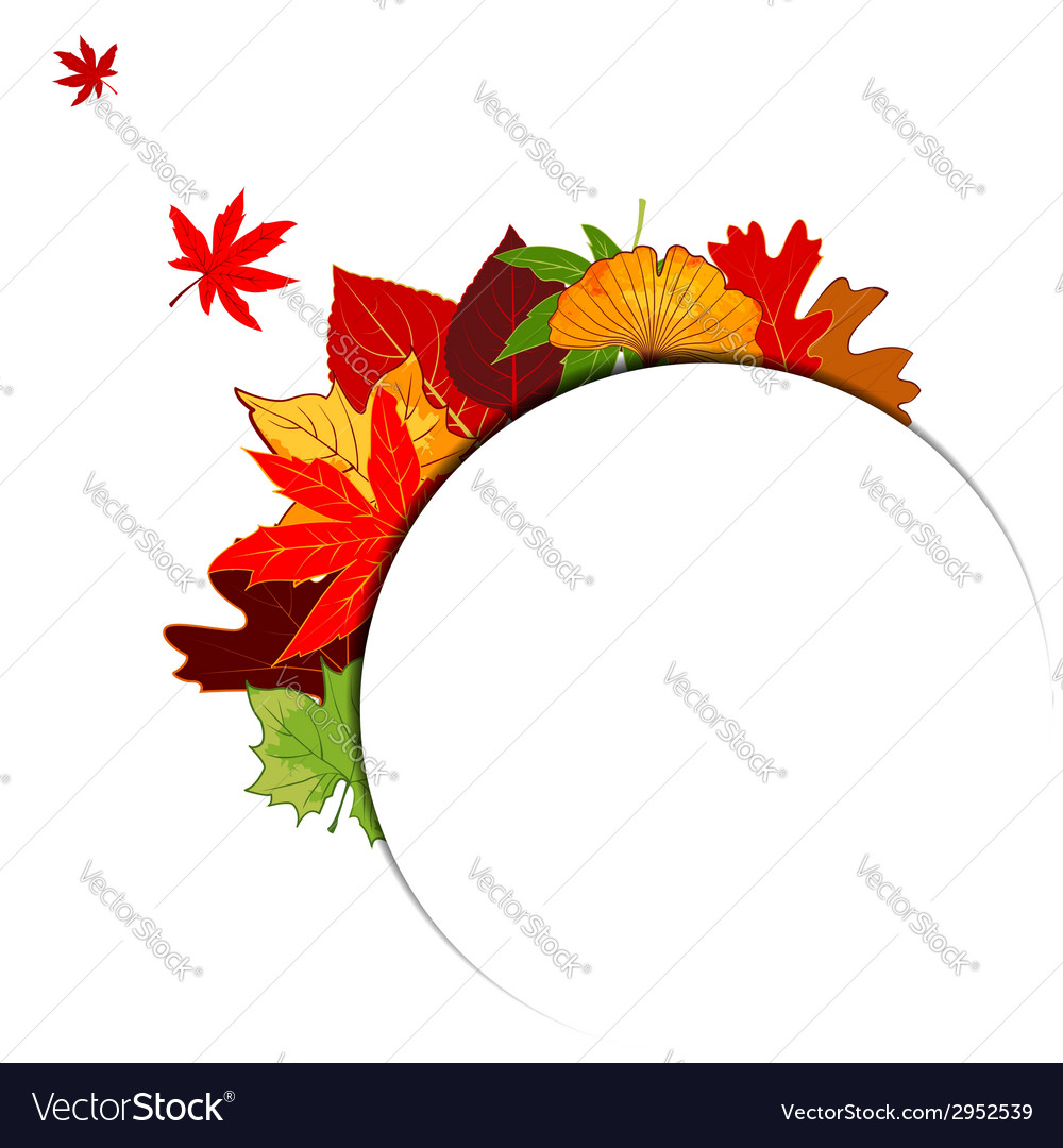 Thanksgiving colorful autumn leaf background vector