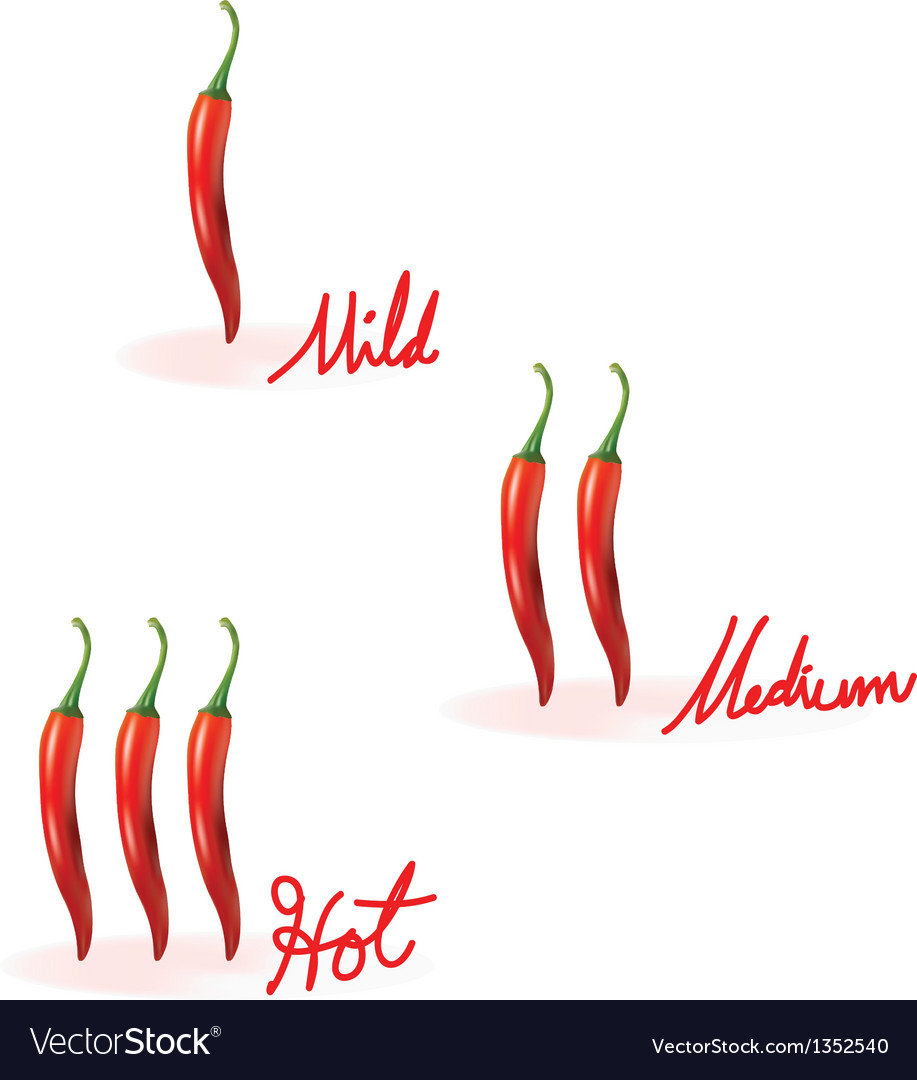Red chilli heat guide vector | Price: 1 Credit (USD $1)