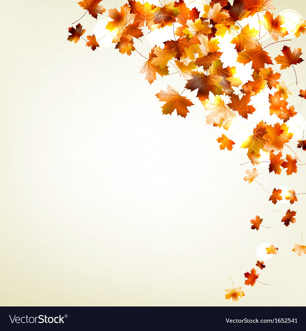 Autumn falling leaves eps 10 vector