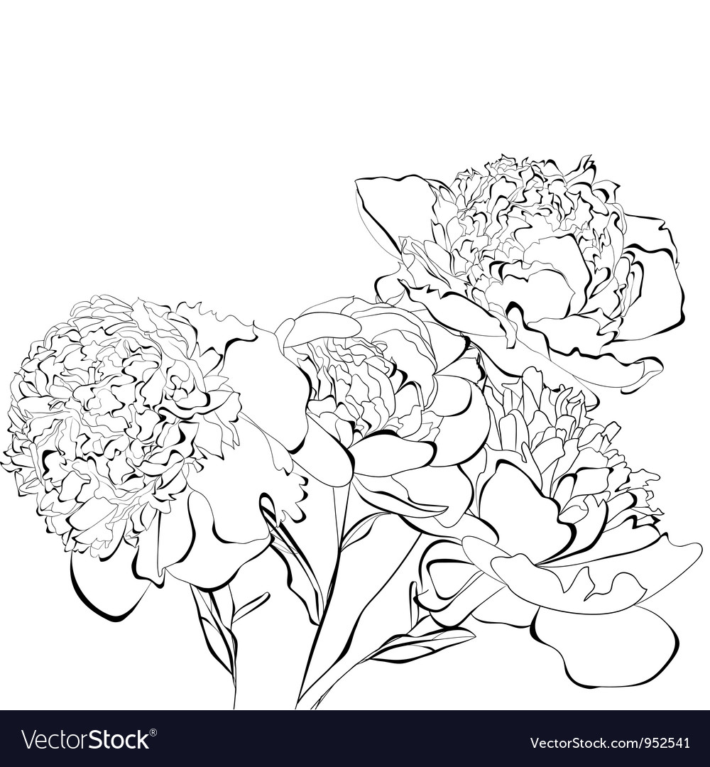 Template for card peony flowers vector | Price: 1 Credit (USD $1)
