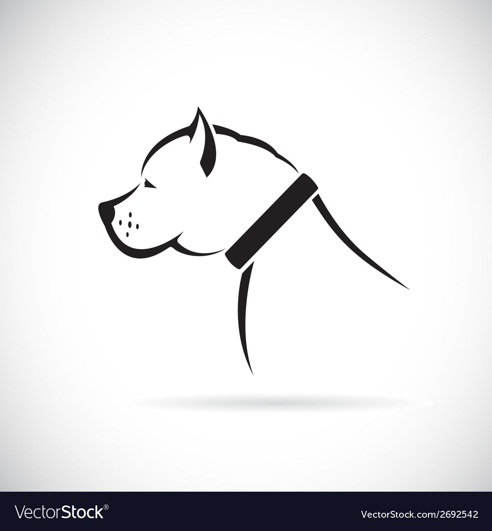 Images of pitbull dog vector | Price: 1 Credit (USD $1)