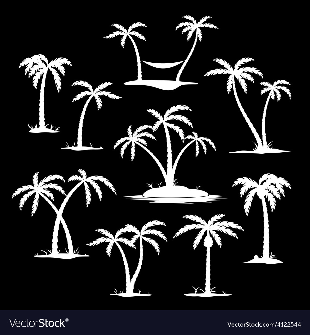 Coconut tree silhouette icons vector | Price: 1 Credit (USD $1)