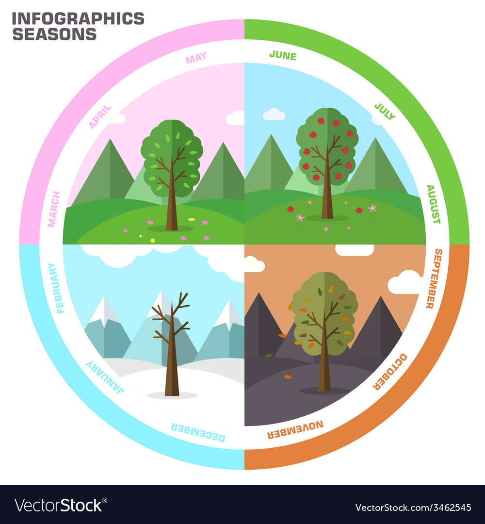 Season infographic set of nature tree background vector | Price: 1 Credit (USD $1)