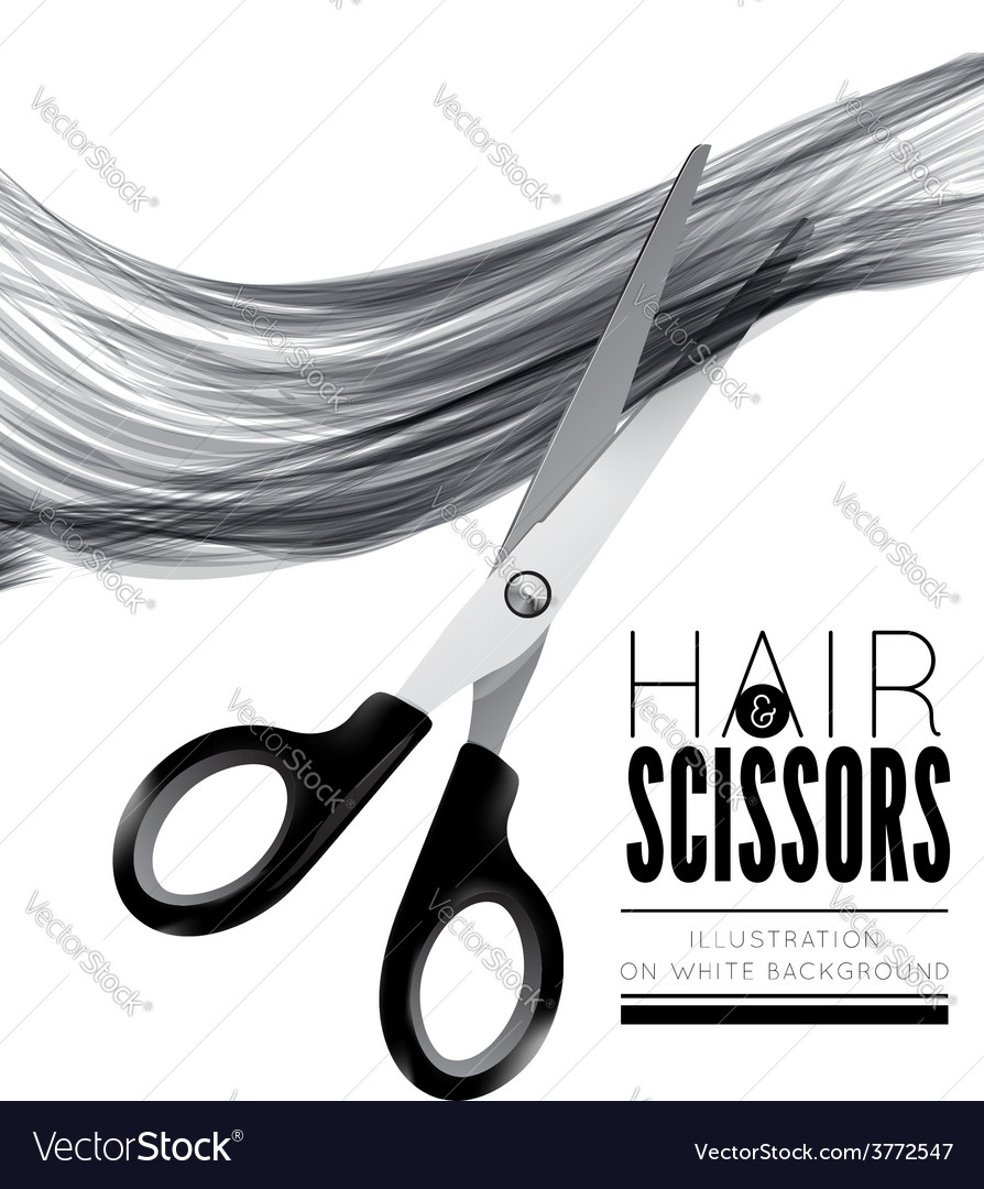 Hair and scissors on a white background vector | Price: 1 Credit (USD $1)