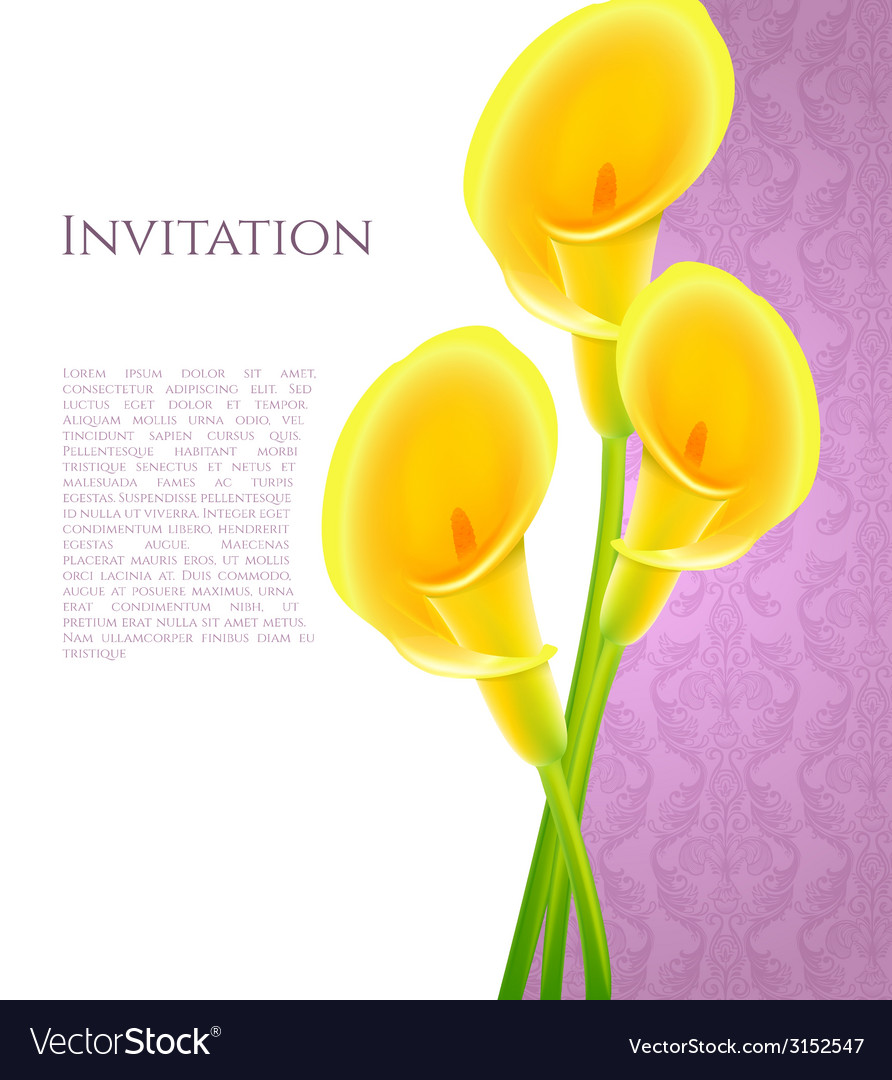 Invitation with callas flowers vector | Price: 1 Credit (USD $1)