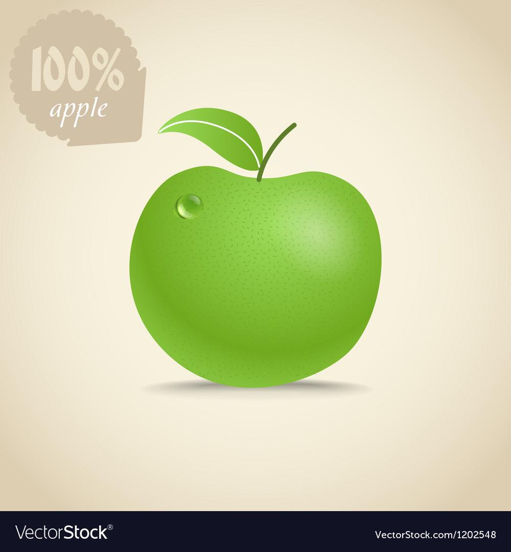 Cute fresh apple vector | Price: 1 Credit (USD $1)