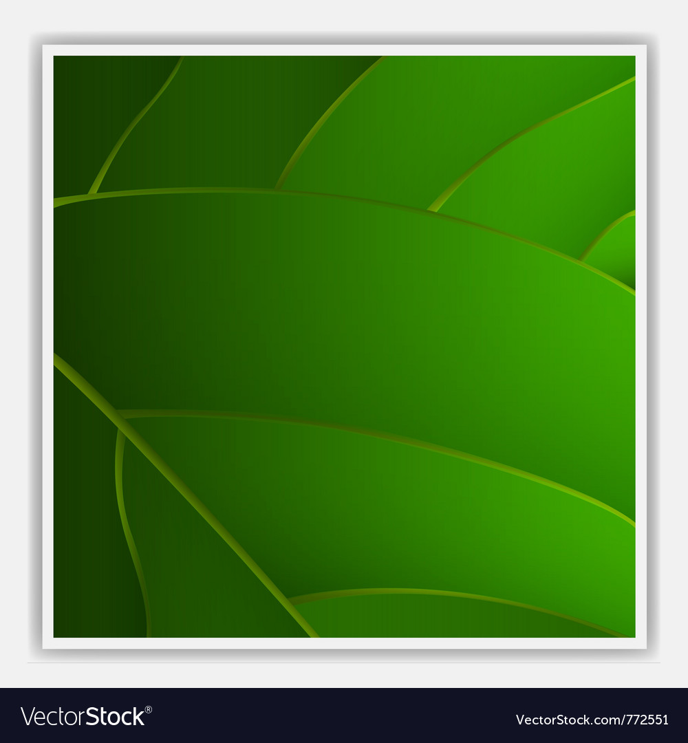Creative leaf background vector | Price: 1 Credit (USD $1)