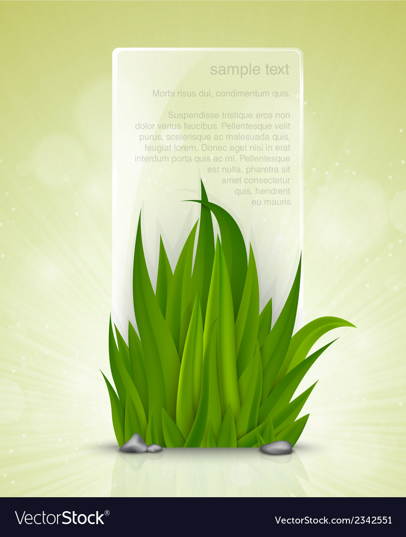 Natural frame of the green grass vector | Price: 1 Credit (USD $1)