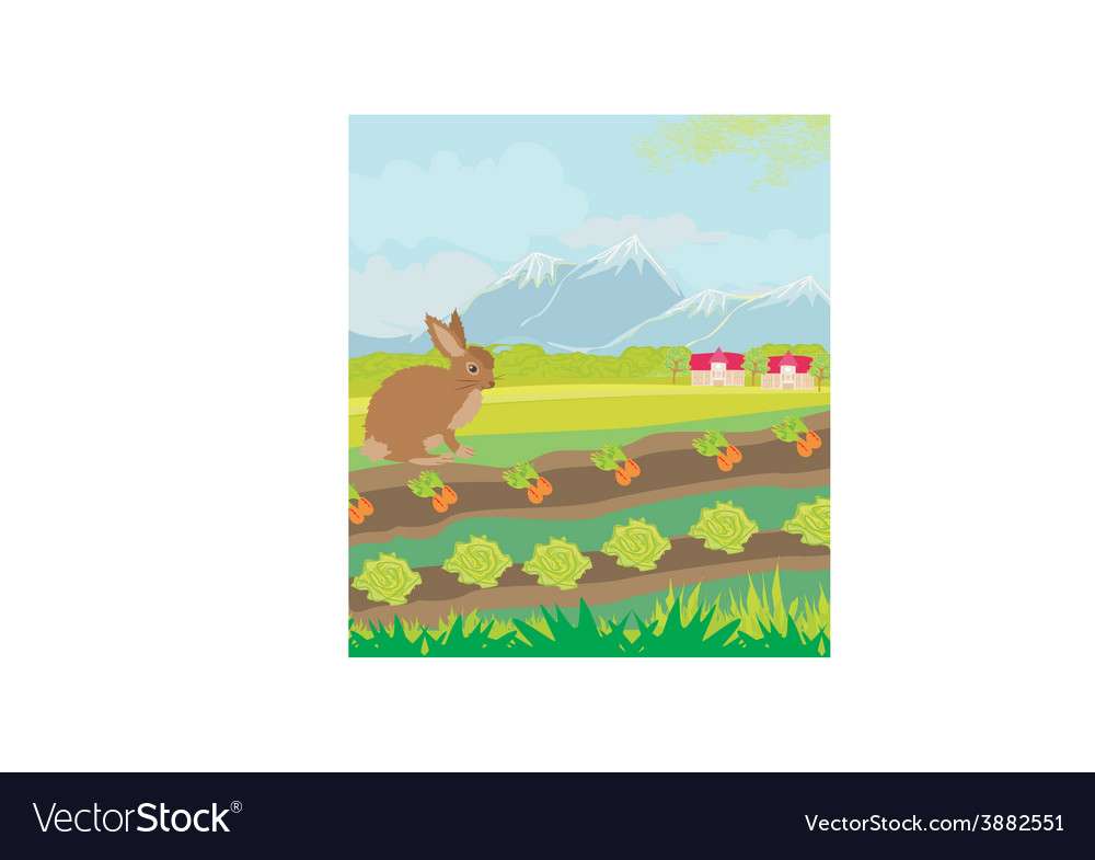 Rural landscape with hare vector | Price: 1 Credit (USD $1)