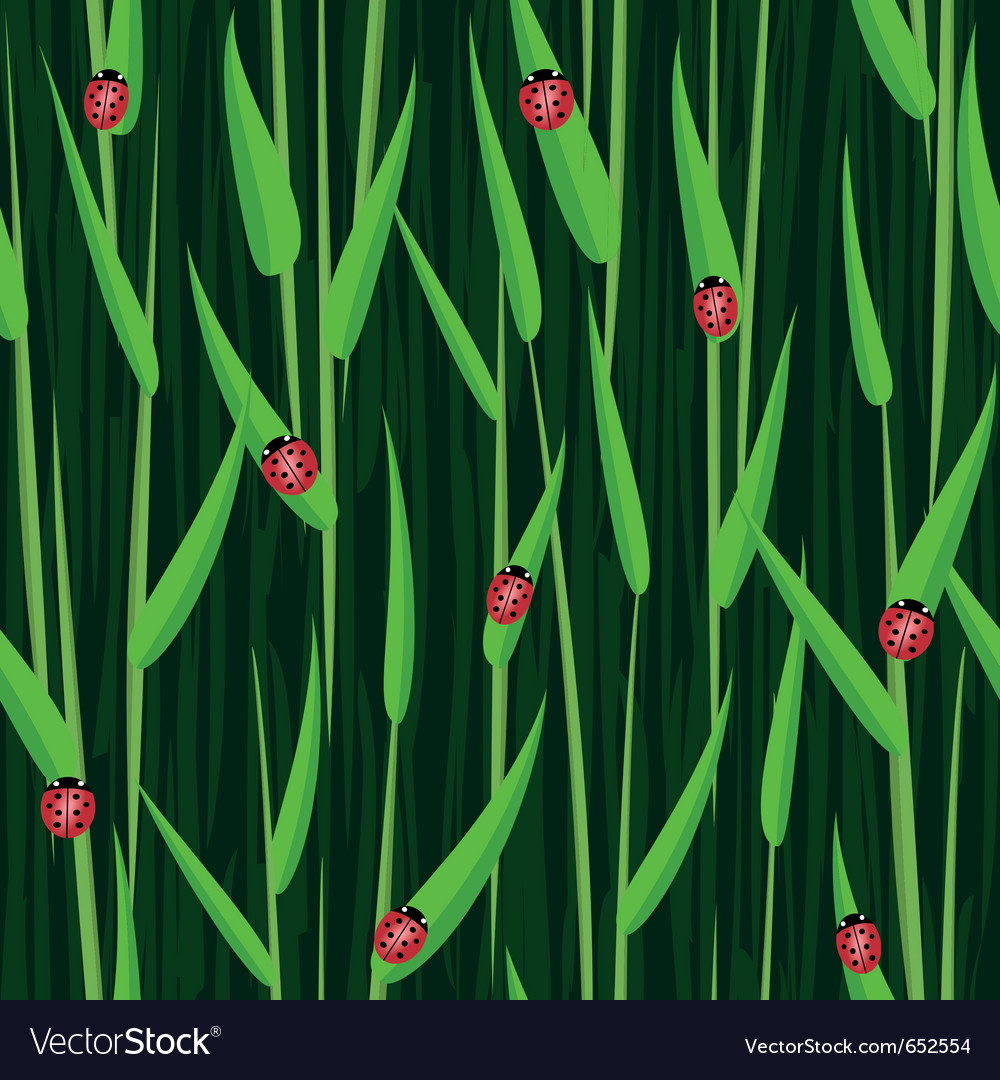 Grass ladybird seamless background vector | Price: 1 Credit (USD $1)