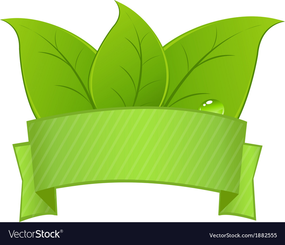 Sign with leaves vector | Price: 1 Credit (USD $1)