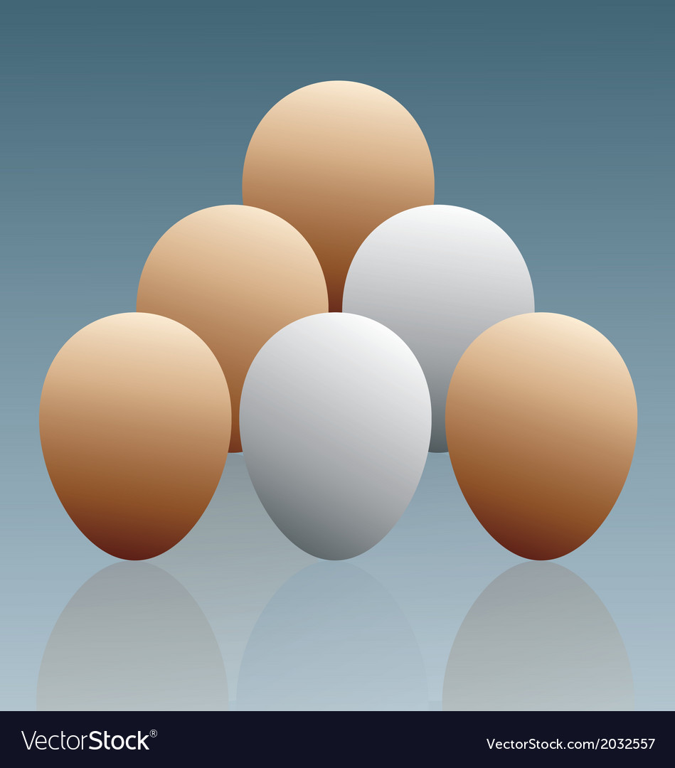 The eggs vector | Price: 1 Credit (USD $1)