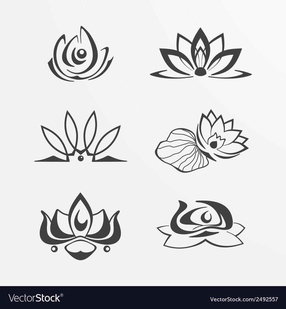 Set of lotuses vector | Price: 1 Credit (USD $1)