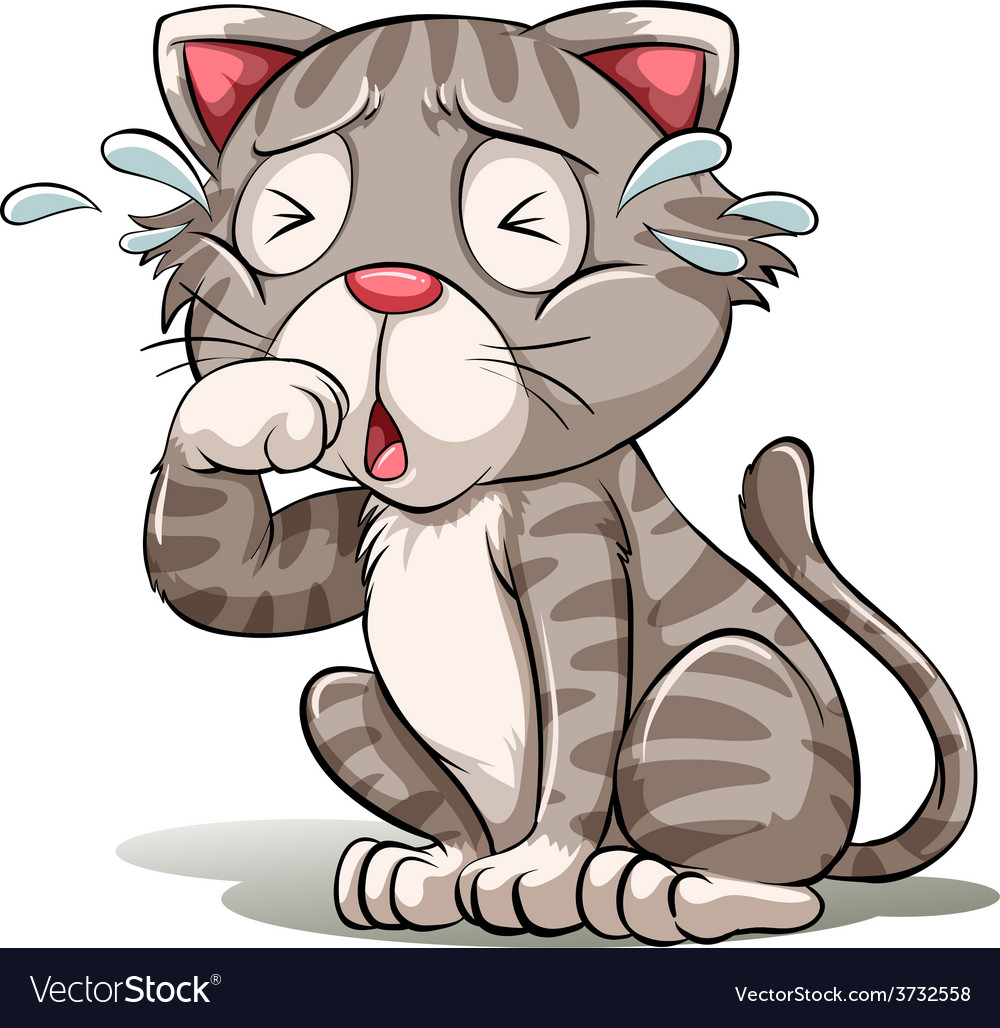 A crying cat vector | Price: 1 Credit (USD $1)