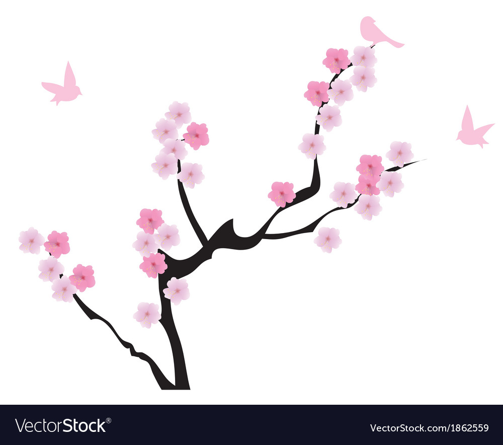 Blooming cherry vector   Price: 1 Credit (USD $1)