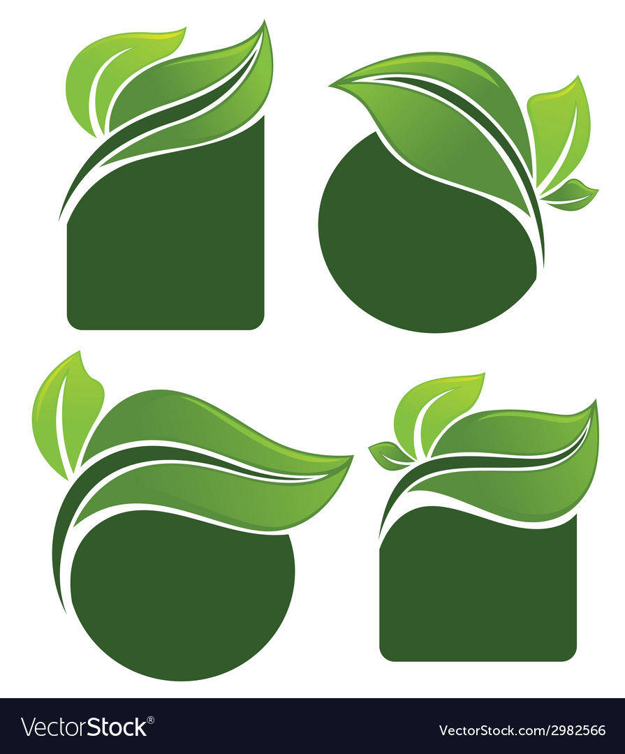 Leaves frames vector   Price: 1 Credit (USD $1)