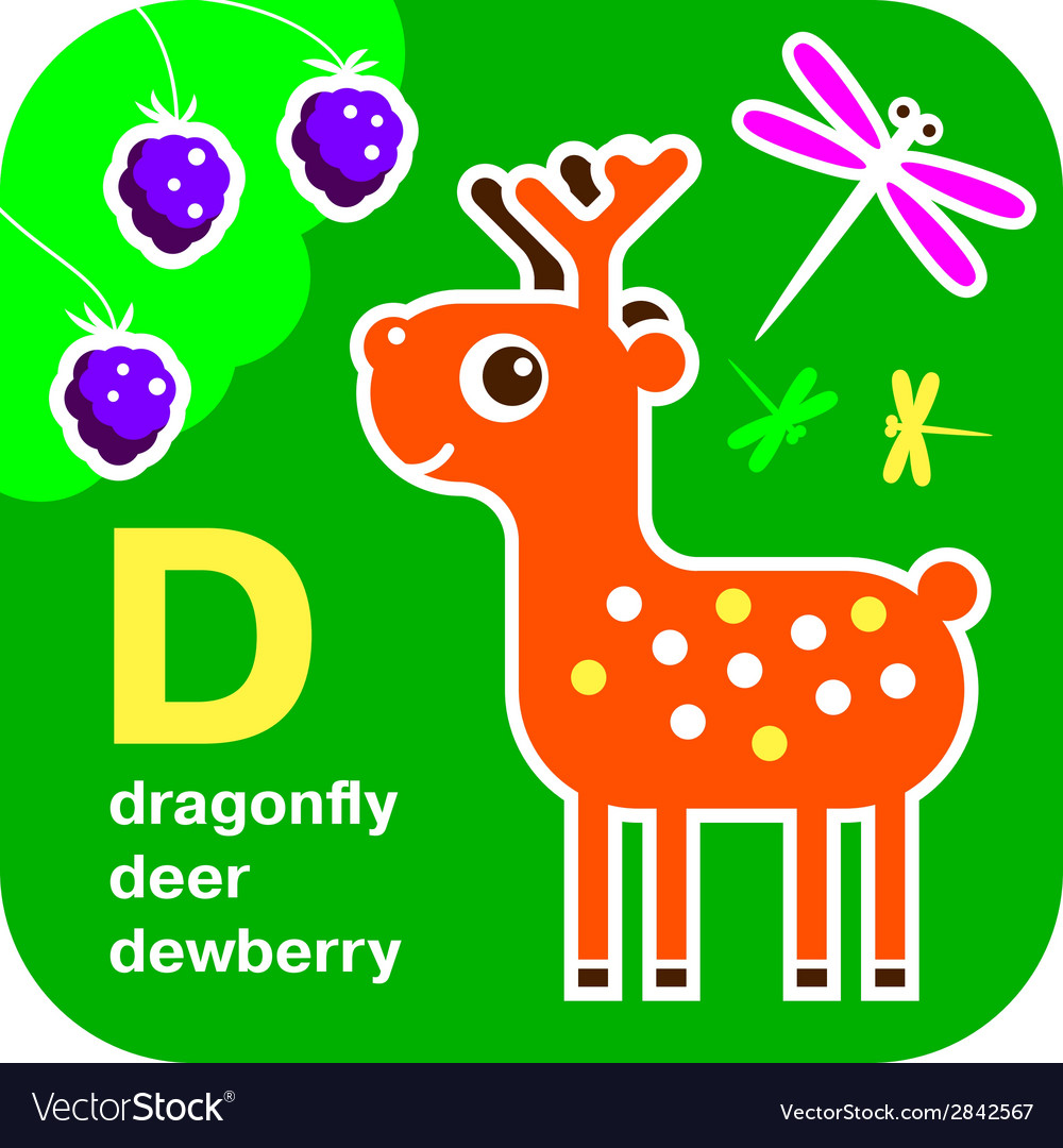 Abc dragonfly deer dewberry vector | Price: 1 Credit (USD $1)