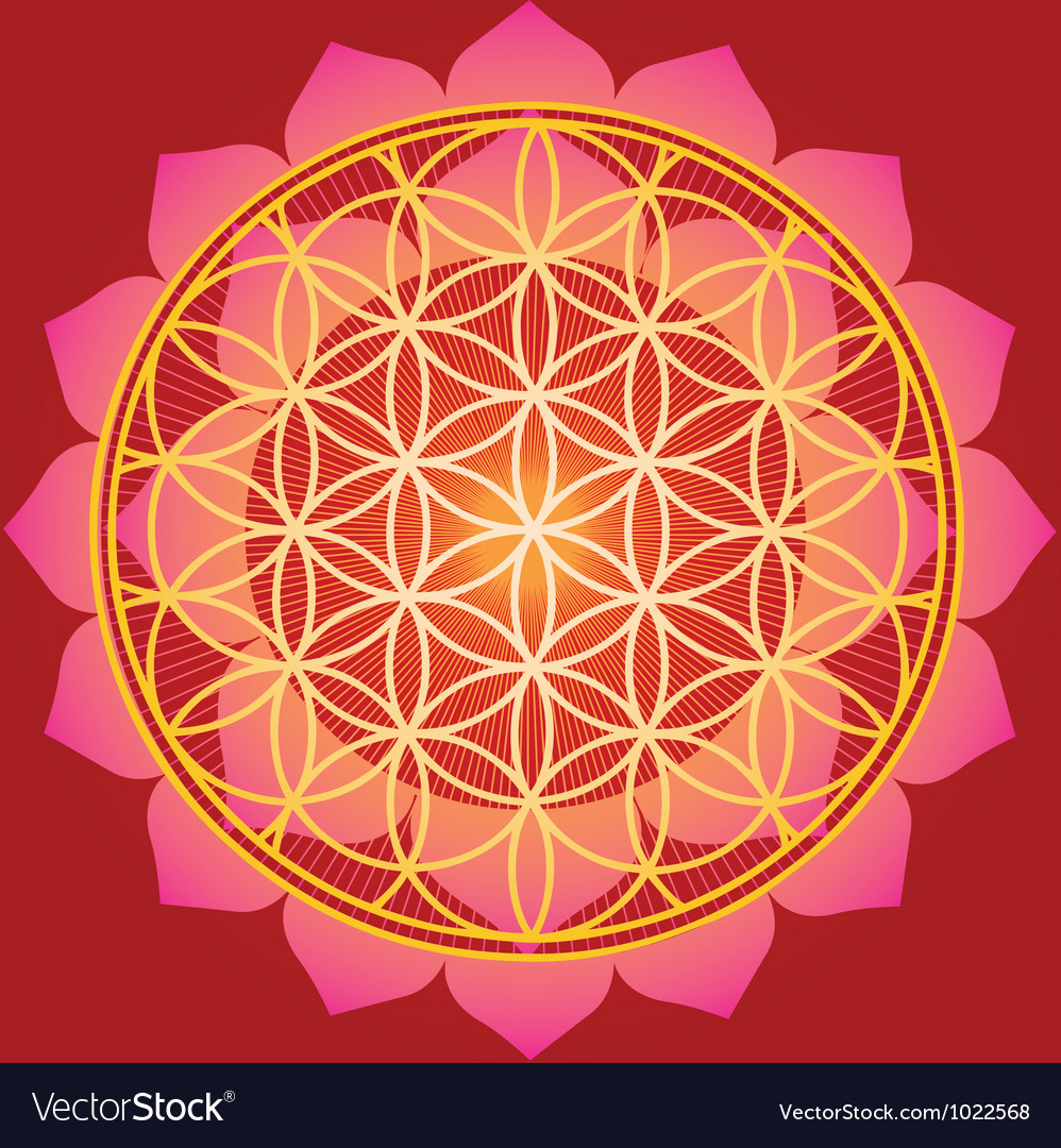 Sacred geometry flower of life mandala vector | Price: 1 Credit (USD $1)