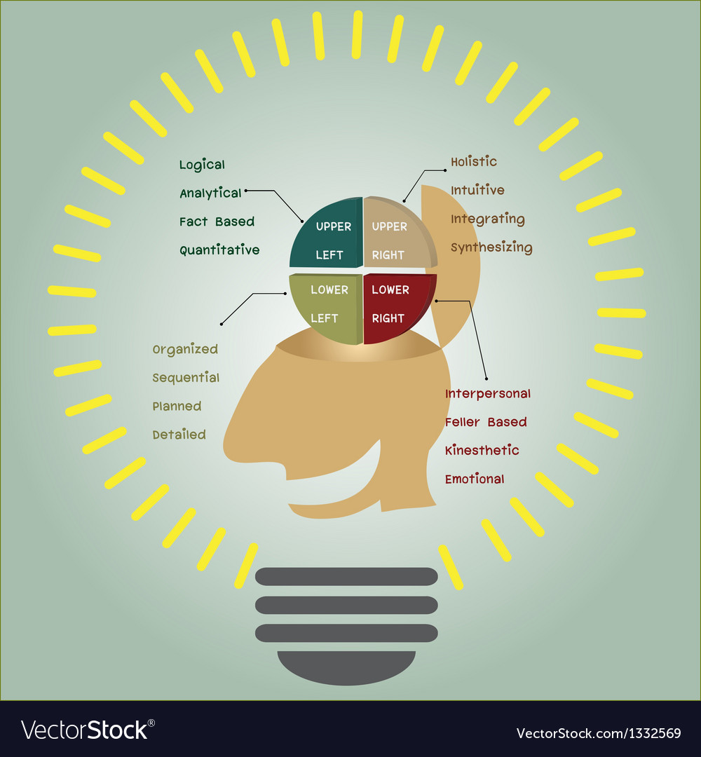 Brain function in light bulb vector | Price: 1 Credit (USD $1)