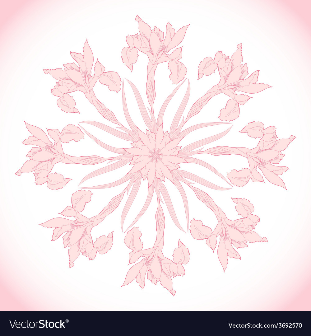 Ornamental round with pink irises vector | Price: 1 Credit (USD $1)