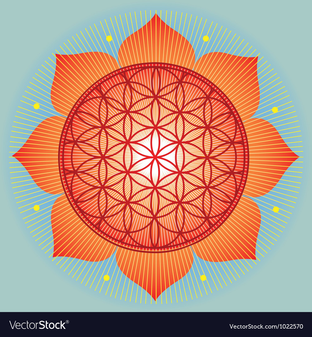Sacred geometry flower of life orange mandala vector | Price: 1 Credit (USD $1)