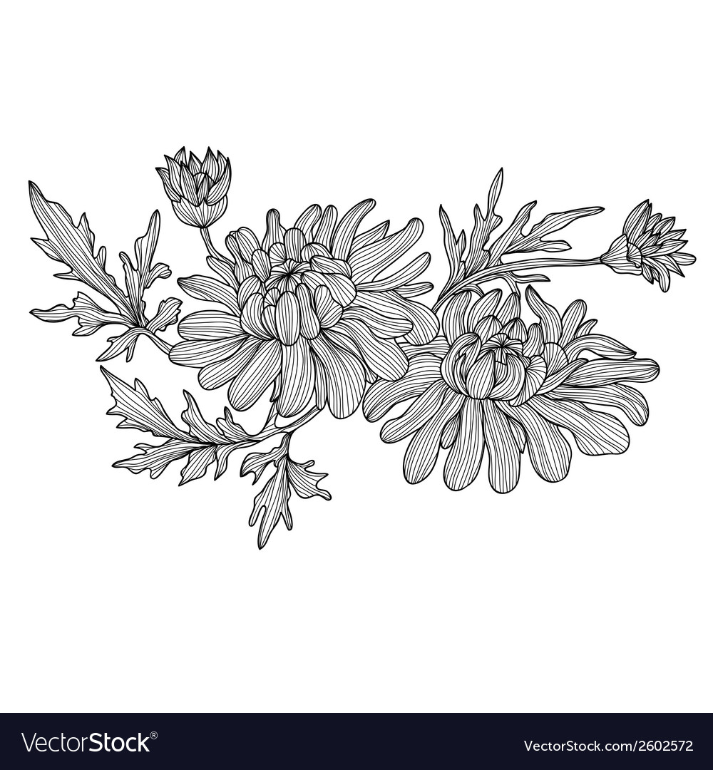 Decorative chrysanthemum vector | Price: 1 Credit (USD $1)