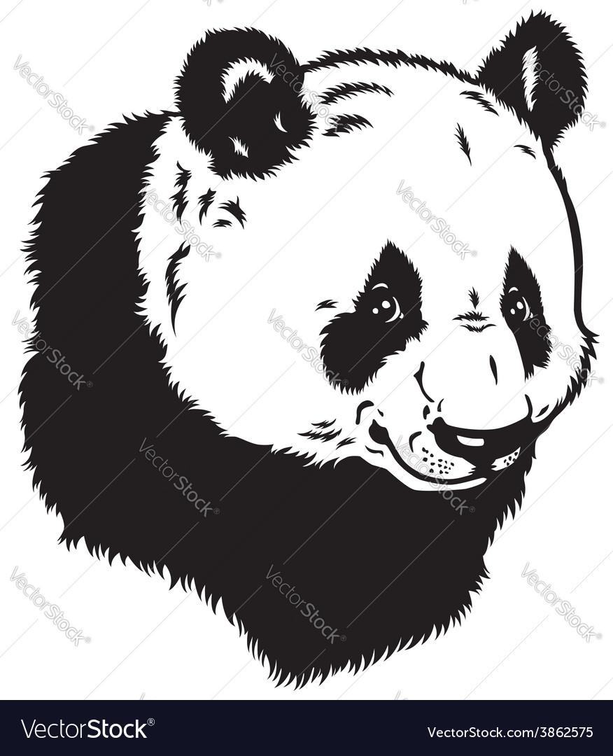 Head of panda bear vector | Price: 1 Credit (USD $1)