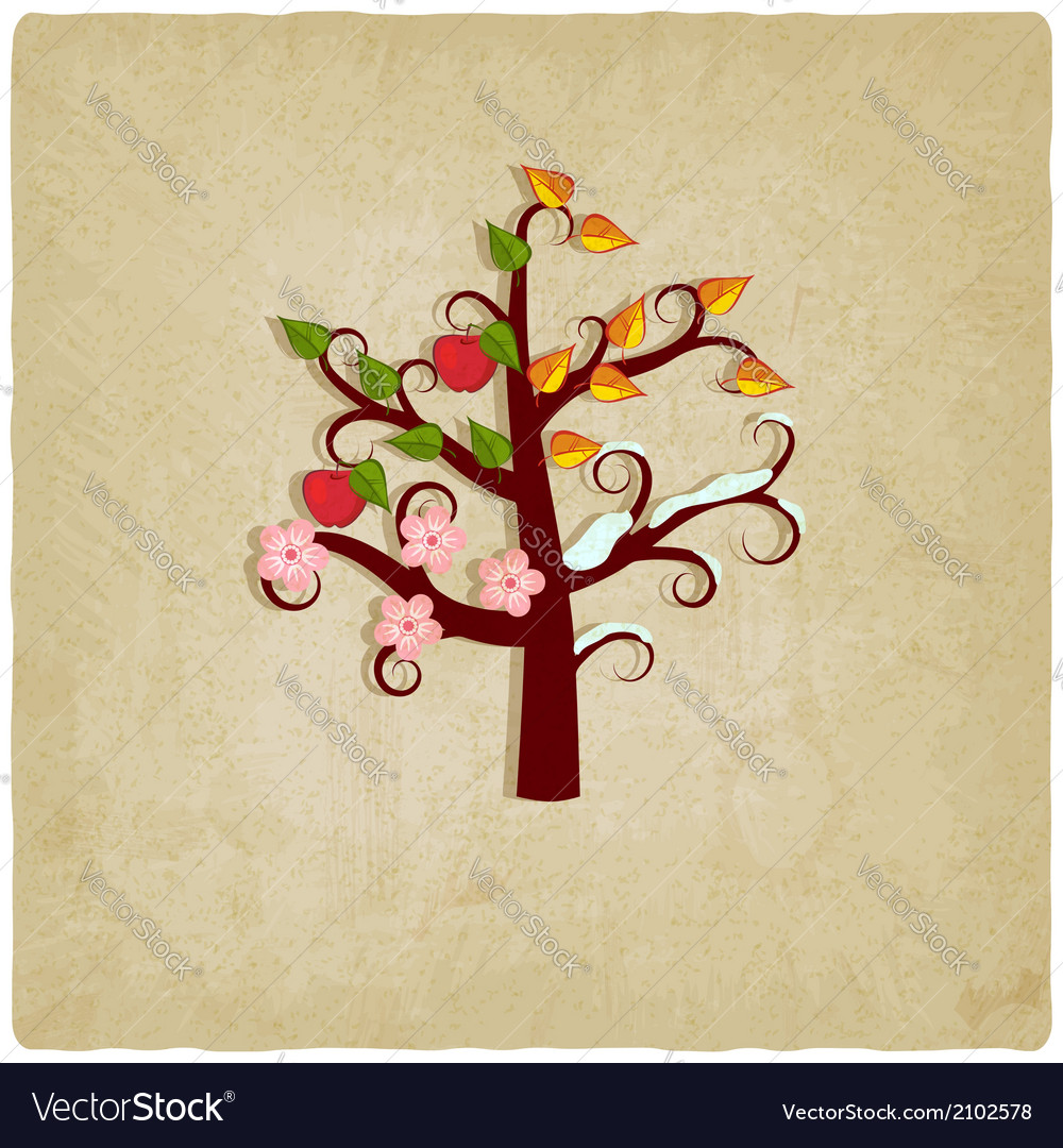 Four seasons trees old background vector | Price: 1 Credit (USD $1)