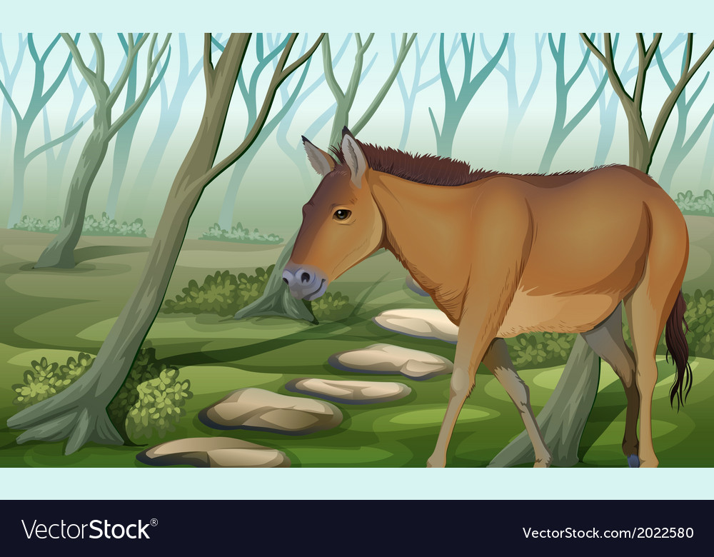 A horse at the forest vector | Price: 1 Credit (USD $1)