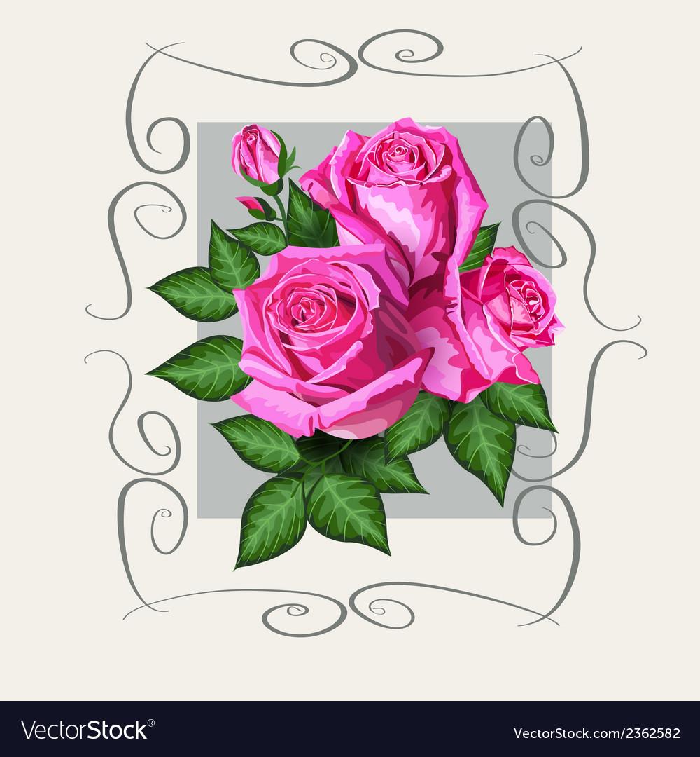 Roses vintage copy vector | Price: 1 Credit (USD $1)