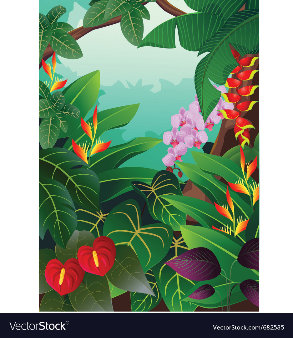 Tropical forest background vector | Price: 3 Credit (USD $3)