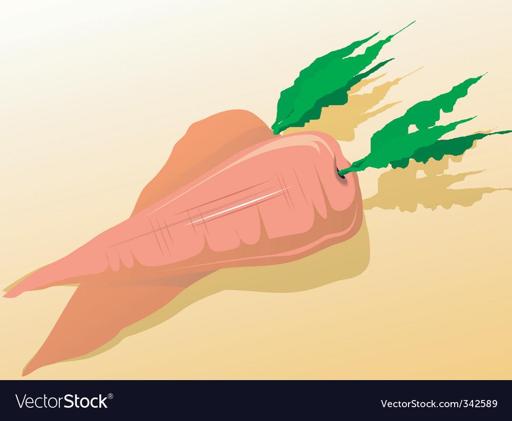 Carrots vector   Price: 1 Credit (USD $1)