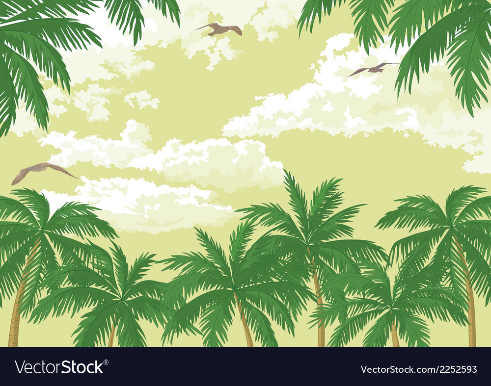 Tropical landscape palms seagulls and sky vector | Price: 1 Credit (USD $1)