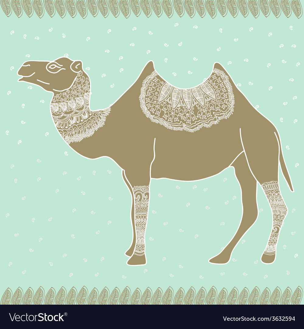 Camel egypt tender vector | Price: 1 Credit (USD $1)