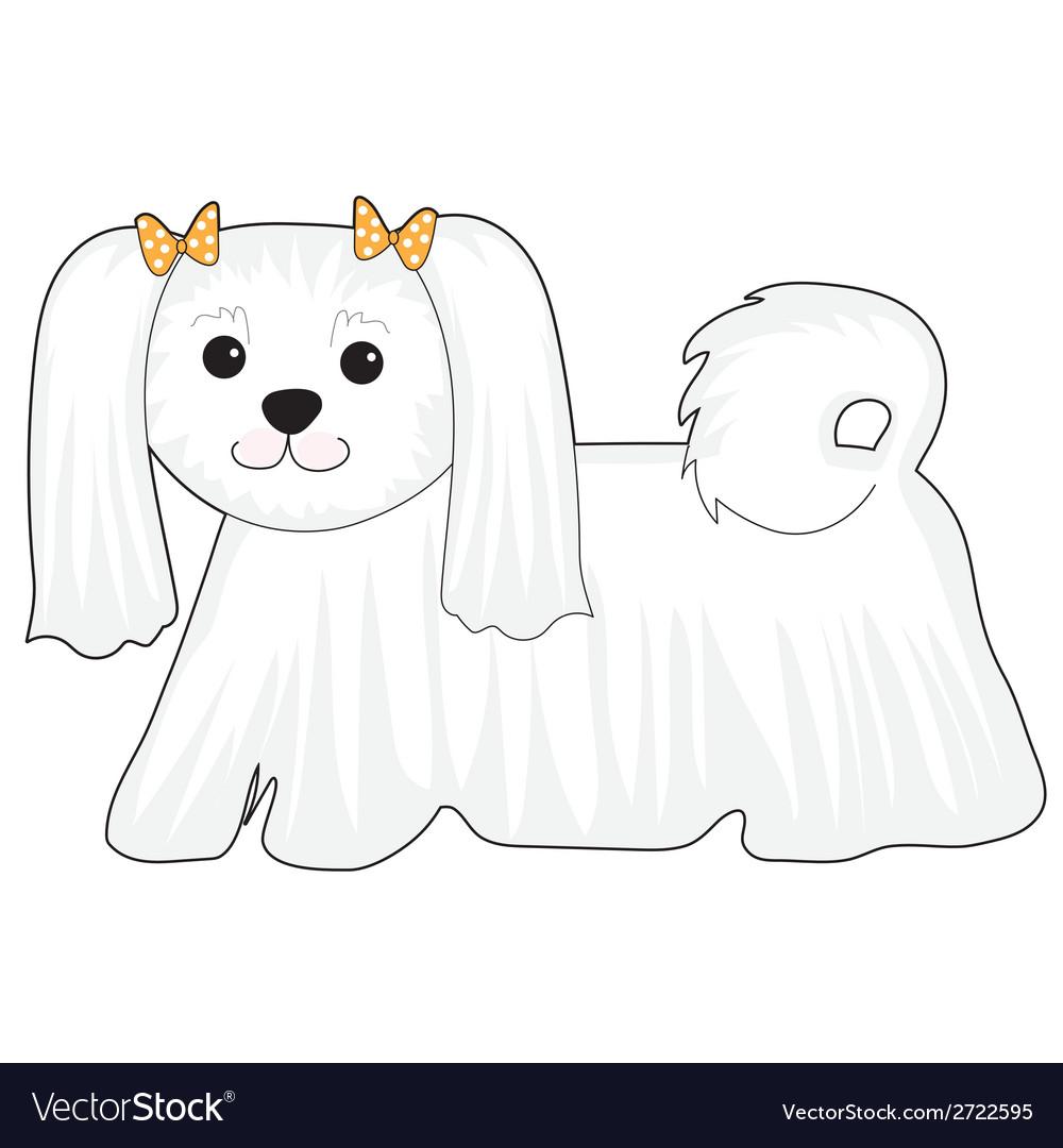 Maltese dog vector | Price: 1 Credit (USD $1)