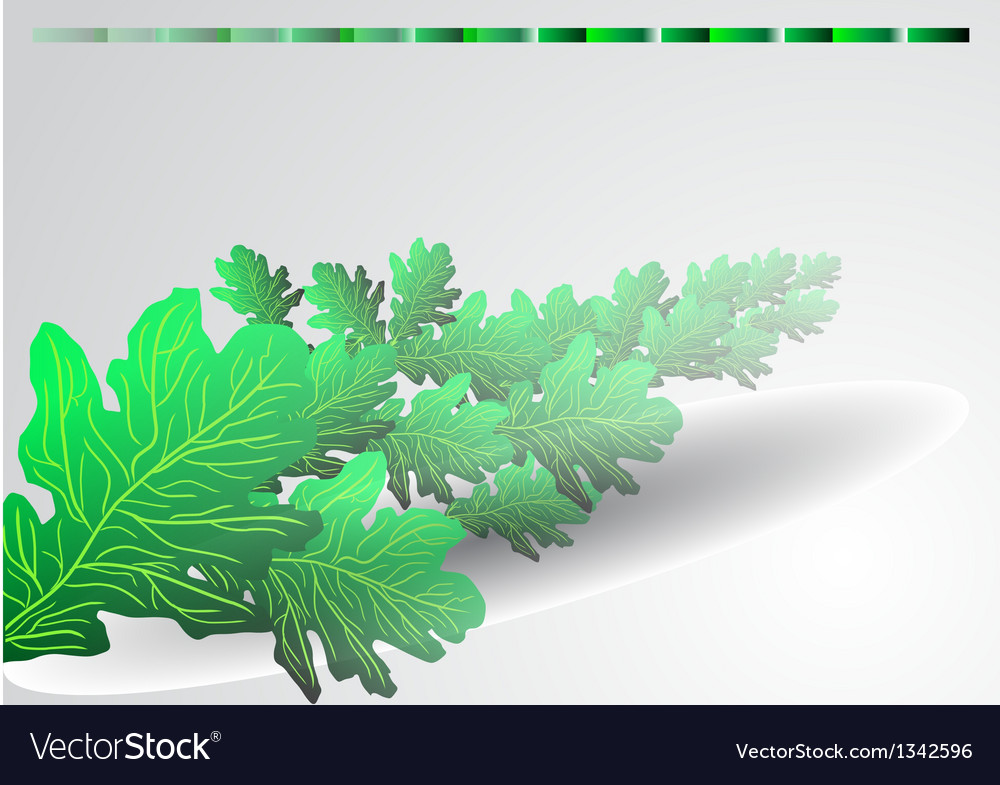 Background with green oak leaves vector | Price: 1 Credit (USD $1)