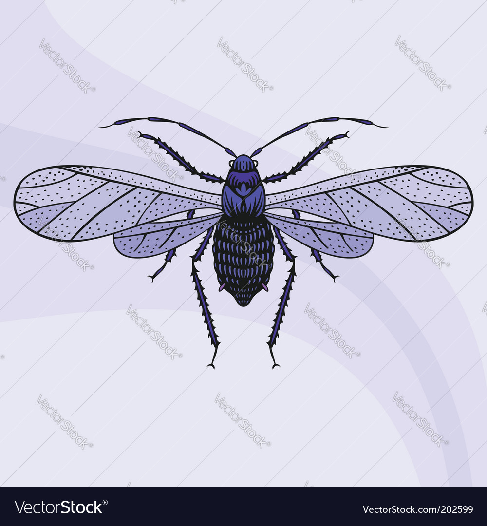 Dragonfly vector | Price: 1 Credit (USD $1)