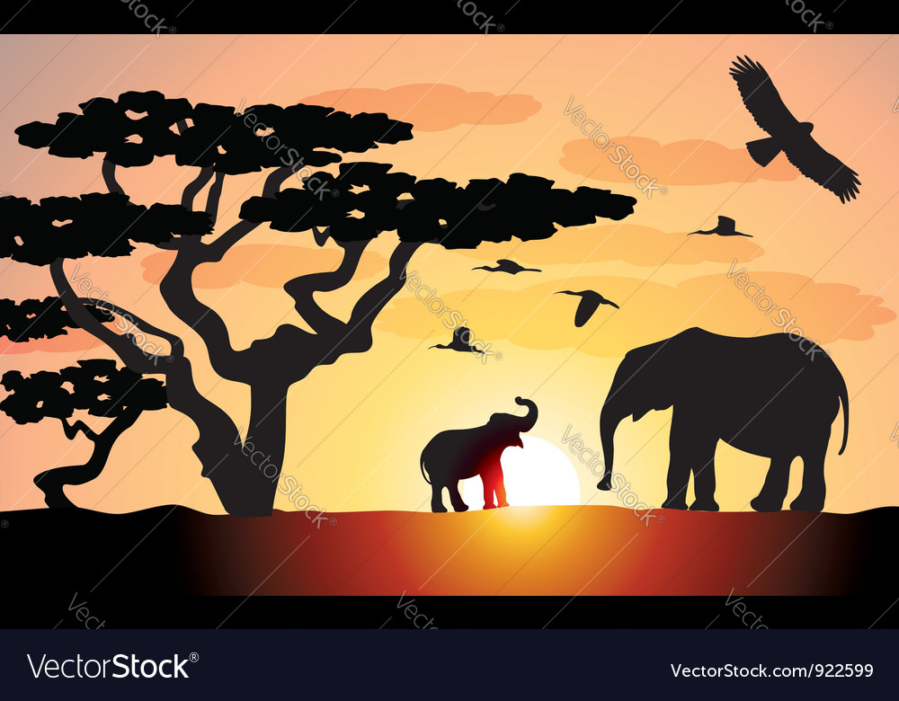 Elephants in africa vector | Price: 3 Credit (USD $3)