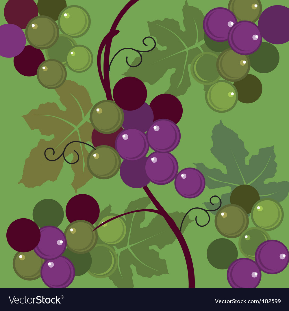 Grapes and leaves vector   Price: 1 Credit (USD $1)
