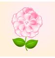 Beautiful pink flower vector