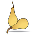 Freehand drawing pear icon vector