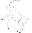 Goat sketch vector