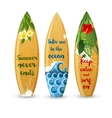Wooden surfboards with type designs vector