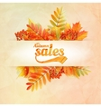 Autumn sale poster with leaves on a old paper vector